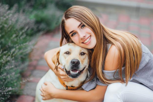 Labrador Retriever Mix mit Frauchen