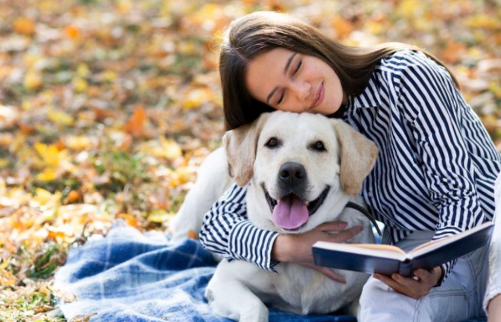 Labrador-Retriever Temperament
